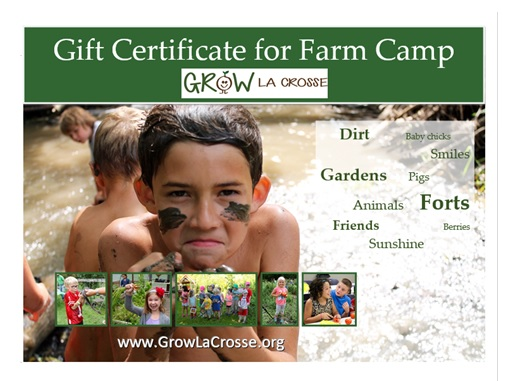 farm camp gift cert