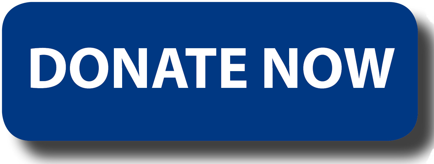 donate-button-logo-blue-rectangle (1)