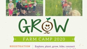 Summer Farm Camp