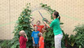 Garden Programming